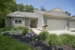 Photo of 3682 Creekside Drive, Dorr, MI 49323 (MLS # 20022782)