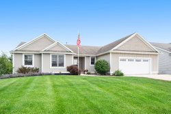 Photo of 8744 Willowrun Drive, Jenison, MI 49428 (MLS # 20024979)