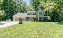 Photo of 11865 Chickory Drive, Grand Haven, MI 49417 (MLS # 20030097)