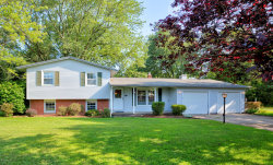 Photo of 15233 James Street, Holland, MI 49424 (MLS # 20032031)