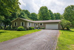 Photo of 44107 Paw Paw Road, Paw Paw, MI 49079 (MLS # 20032576)
