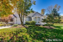 Photo of 1075 Dogwood Meadows Drive, Ada, MI 49301 (MLS # 20045673)