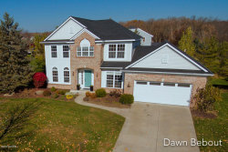 Photo of 7927 Thornapple Club Drive, Ada, MI 49301 (MLS # 20045848)