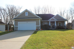 Photo of 6220 Sheldon Oak Drive, Hudsonville, MI 49426 (MLS # 20048434)