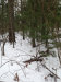 Photo of Lot 107 & 132 Holiday Beach, Greenville, MI 48838 (MLS # 16002710)
