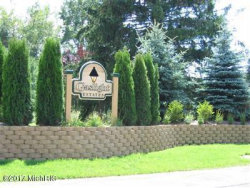 Photo of 6429 Gaslight Circle, Unit Lot 13, Saugatuck, MI 49453 (MLS # 17044885)