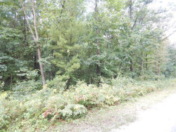 Photo of Lot G Ruthie Lane, Fruitport, MI 49415 (MLS # 17045729)