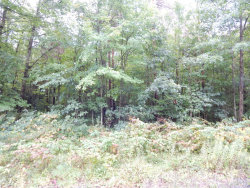 Photo of Lot F Ruthie Lane, Fruitport, MI 49415 (MLS # 17045736)