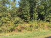 Photo of Lot 1 Blair Street, Zeeland, MI 49464 (MLS # 17047305)