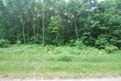 Photo of Gleason Road, Saugatuck, MI 49453 (MLS # 18029386)