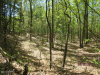 Photo of 6325 Silver Lake Drive, Unit Lot 1, Saugatuck, MI 49453 (MLS # 18038166)