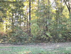 Photo of 2971 Whisper Lane, Unit Lot #3, Hamilton, MI 49419 (MLS # 18050948)