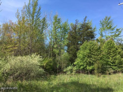 Photo of 399 Blue Star Highway, South Haven, MI 49090 (MLS # 19000719)