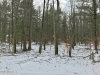 Photo of Lake Effect Drive, Holland, MI 49423 (MLS # 19004946)