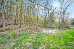 Photo of 8000 Cascade Road, Ada, MI 49301 (MLS # 19008809)