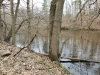 Photo of 8521C River Run Trail, Greenville, MI 48838 (MLS # 19018187)