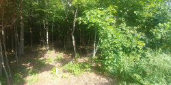 Photo of 4065 Ronalds Rd, Unit Lot 62, Dorr, MI 49323 (MLS # 19030677)