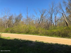 Photo of Lot 31-34 Miami Avenue, South Haven, MI 49090 (MLS # 19054851)