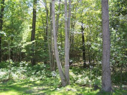 Photo of N Darling Lane, Fennville, MI 49408 (MLS # 20002245)
