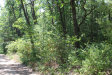 Photo of Chickadee Drive, Greenville, MI 48838 (MLS # 20025839)