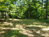 Photo of 4460 E Silver Beaches Court, Custer, MI 49405 (MLS # 20033876)