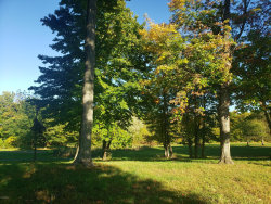 Photo of 4869 Knoll Court, Unit Lot 18, Watervliet, MI 49098 (MLS # 20040454)