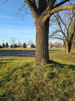 Photo of 5679 Co Rd 687, South Haven, MI 49090 (MLS # 20047602)