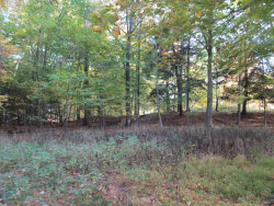 Photo of 302 & 303 Ironwood Drive, South Haven, MI 49090 (MLS # 20048478)