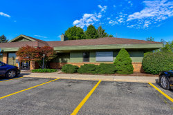 Photo of 4868 Lake Michigan Drive, Unit A, Allendale, MI 49401 (MLS # 20032725)