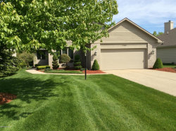 Photo of 1765 Spring View Court, Caledonia, MI 49316 (MLS # 19040177)