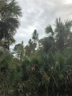 Photo of DONAHUE AVE, NORTH PORT, FL 34288 (MLS # A4428189)