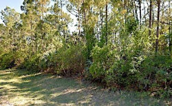 Photo of CHILE ST, NORTH PORT, FL 34288 (MLS # A4449256)
