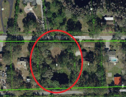 Photo of 20620 Gardenia Drive, LAND O LAKES, FL 34638 (MLS # A4468789)