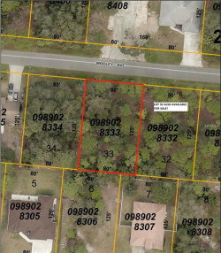 Photo of WOOLEY AVE, NORTH PORT, FL 34287 (MLS # C7403367)