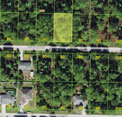 Photo of 18210 Shamrock Avenue, PORT CHARLOTTE, FL 33948 (MLS # C7404399)