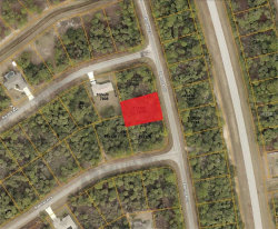 Photo of BANNOCK CIR, NORTH PORT, FL 34288 (MLS # C7409383)