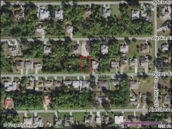 Photo of 23208 Nancy Avenue, PORT CHARLOTTE, FL 33952 (MLS # C7422421)