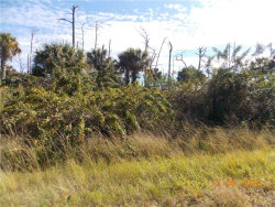 Photo of PLUMLEAF TER, NORTH PORT, FL 34288 (MLS # C7423158)
