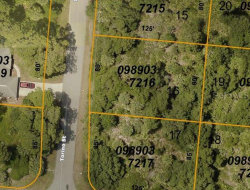 Photo of LOT 16 Torino Street, NORTH PORT, FL 34287 (MLS # C7423341)