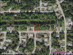 Photo of BLUEBIRD AVE, NORTH PORT, FL 34286 (MLS # C7427697)