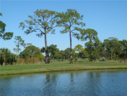 Tiny photo for 10090 Eagle Preserve Drive, ENGLEWOOD, FL 34224 (MLS # D5796064)