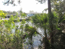 Tiny photo for 1191 Lampp, ENGLEWOOD, FL 34223 (MLS # D5922348)