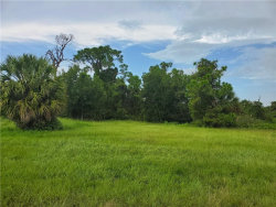 Photo of 177 W Pine Valley Lane, ROTONDA WEST, FL 33947 (MLS # D6113743)