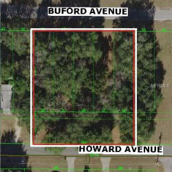 Photo of BUFORD AVE, DADE CITY, FL 33525 (MLS # E2400183)