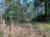 Photo of MAYTOWN RD E, OSTEEN, FL 32764 (MLS # O5773389)