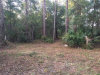 Photo of PERVIS LN, OSTEEN, FL 32764 (MLS # O5785609)