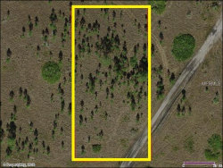 Photo of SUBURBAN ESTS SEC 36...000K 0940, SAINT CLOUD, FL 34771 (MLS # S5002098)