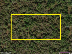Photo of SUBURBAN ESTS SEC 11...2222 0030, SAINT CLOUD, FL 34772 (MLS # S5003761)