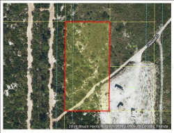 Photo of HOLOPAW GROVES RD, SAINT CLOUD, FL 34771 (MLS # S5021848)