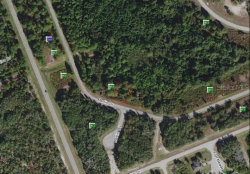 Photo of MARLIN DR, POINCIANA, FL 34759 (MLS # S5024971)